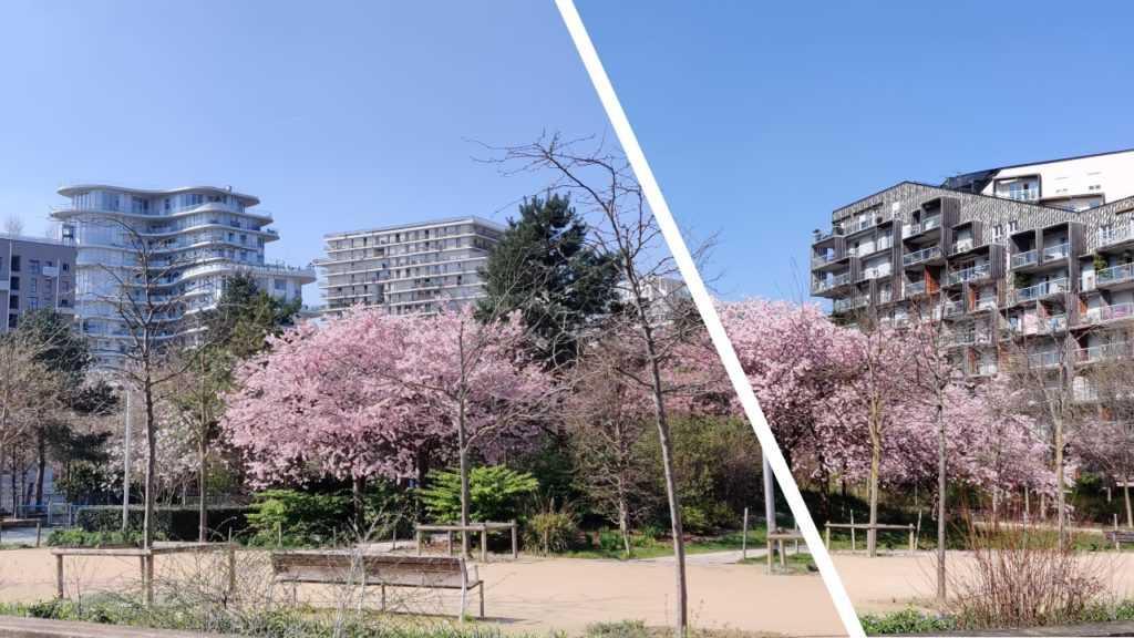Journalismus Photo Park Martin Luther King Paris 17. Bezirk Arrondissement, Kirschblütten, rosa, graue Fassaden ökologisches Stadtviertel, Plattform Urbanität, urban media,